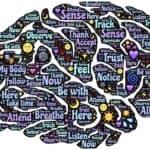 Empathie und Achtsamkeit